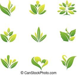 Green nature and tree symbol