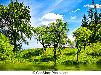 Green nature landscape
