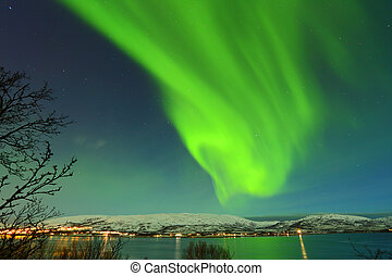 Beautiful green northen lights from Tromso in Norway sky