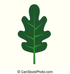 green oak leaf icon- vector illustration