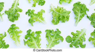 Green oak lettuce leaves on white background. Top view