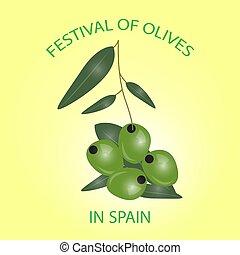 Green olives branch isolated on white background. Design for oli
