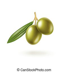 Green Olives Branch with Leaves Isolated on White Background