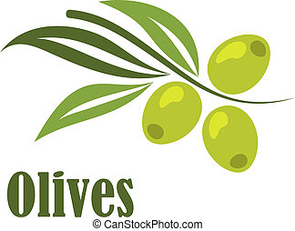 Green olives branch with text in cartoon style for vegetarian food design