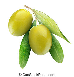 Green olives - Two green olives on branch with leaves ...