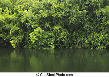 Green on river