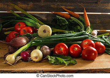 Green onions, garlic, carrots, beet and tomatoes against the...