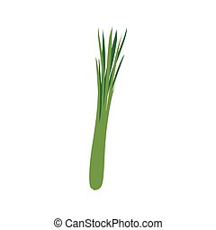 Green onions isolated. leek on white background. Vegetarian food