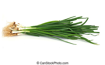 Green onions, photo on the white background