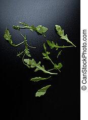 rucola - green organic rucola leafs on a black table