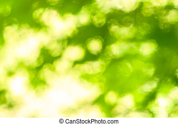 Green out of focus background