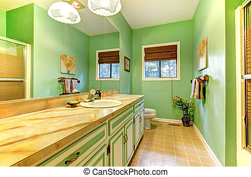 Green outdated bathroom interior design.