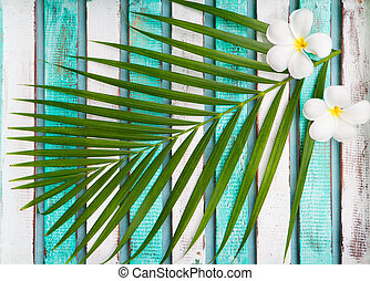 Green palm leaf with frangipani flowers. Top view.