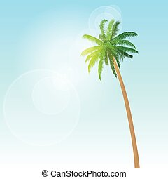 green palm tree over blue sky vector