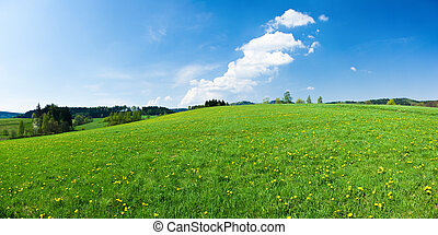 Green panorama during the spring
