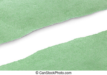Green Paper Torn in Half over White with Soft Shadow