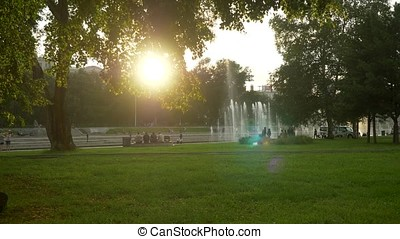 Green park at summer time in during sunset time.