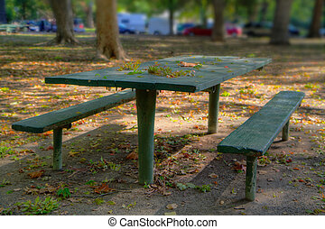 Green Park Picnic Bench HDR