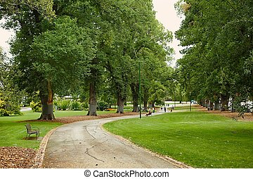 Green park with trees