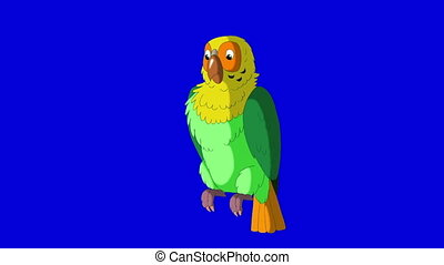 Green Parrot Cleans Feathers. Classic Handmade Animation.