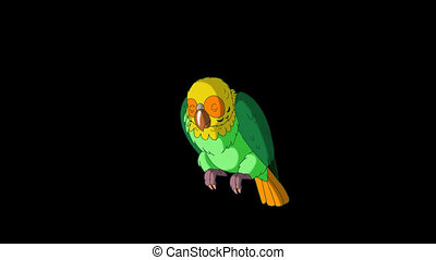 Green Parrot Wakes Up. Classic Handmade Animation with Alpha Channel.