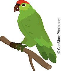 Green parrot with a red spot on his head, isolated vector illustration