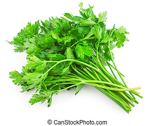 Fresh green parsley isolated on white background, food ingredient
