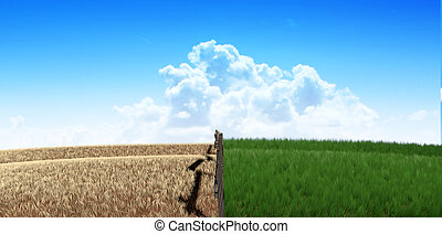 A meadow symmetrically cut split by a wooden fence with one side flourishing and the other withering symbolising the saying greener pastures on a blue sky background