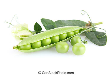 green pea with leaves and flower isolated on white...