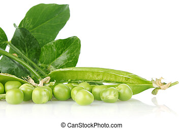 green pea with leaves