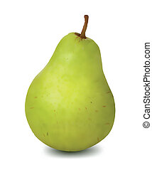 Green pear isolated on white background. Vector illustration