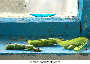 Green peas on window sill