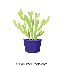 Green pencil cactus in purple ceramic pot. Succulent plant. Natural home decor element. Indoor gardening theme. Flat vector design
