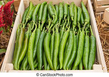 green pepper on shelf in market.