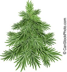 Green pine tree. Isolated illustration in vector format