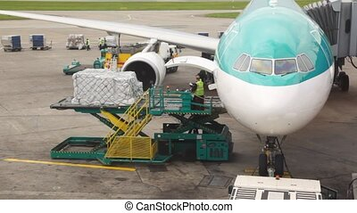 plane standing at airstrip is loaded with goods by service ...