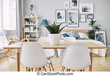 green plant in a white pot on the table. Table with chairs.