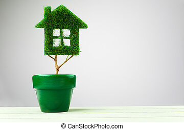 Green plant in pot shaped like house