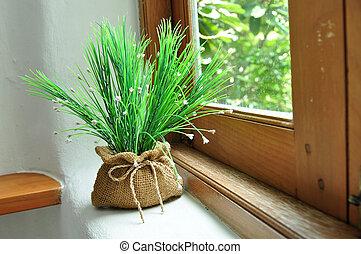 green plant on a windowsill