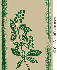green plant on grunge background, vector illustration