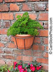 green plant pot on brick wall