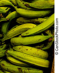 green plantains in the market