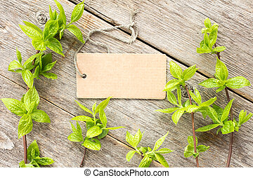 Green plants and blank tag