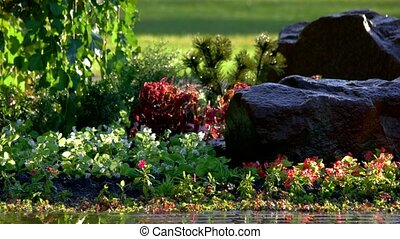 Green plants and rocks. Beautiful garden with wet greens.