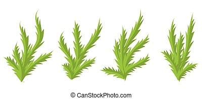 Green plants, bushes vector set.