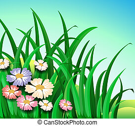 Green plants with colorful flowers