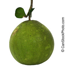 Green pomelo on white background.
