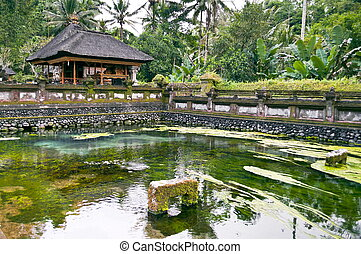 Ubud temple - Green Pond in Ubud temple site in Bali ...