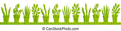 Green Pots with Plats Isolated