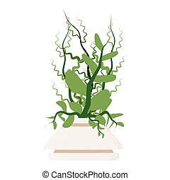 Green Potted Houseplant Isolated on White Background. Vector...